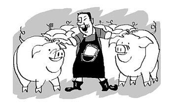 猪价涨势虽已明朗但要注意这一点,不然可能要吃大亏
