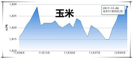 12月6日猪评:屠企与养户博弈之下,卖方市场切莫集中出栏