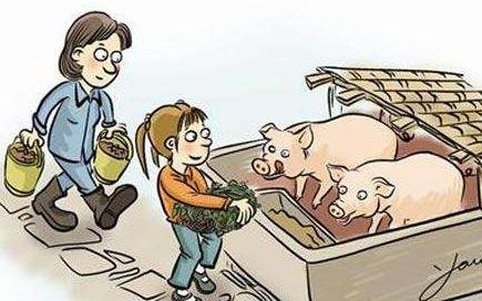 13日盘点:11月猪肉价格下降9.0%,影响CPI降0.25个百分点
