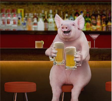 养猪巨头业绩飘红,温氏今年已创收300多亿