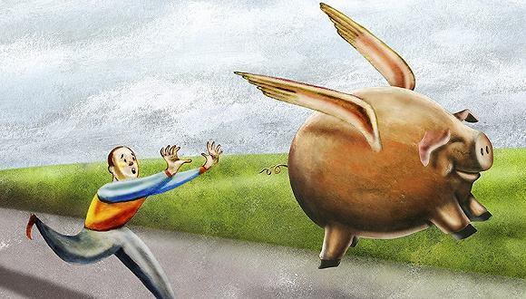 必看!屠宰上量!猪价未来继续涨的可能很大!
