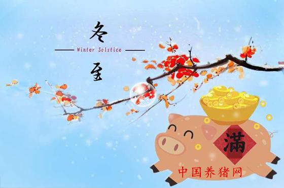"""养猪人的冬至,千万别天寒地冻、路遥""""猪亡""""!"""