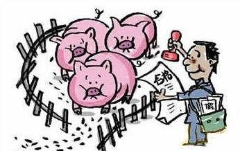 农民养猪一定要领的3个证,否则领不到养殖补贴!