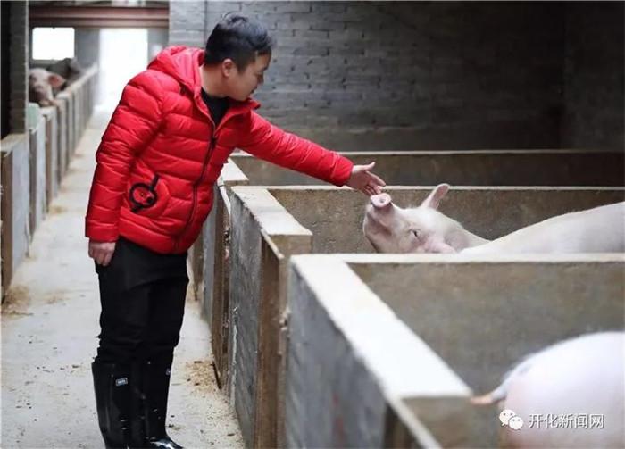 在父亲度过危险期后,汪小山重新返校,继续他的创业梦想。连续的工作让他身心疲惫,在一次食物中毒之后,躺在病床上的他开始思考:为什么现在吃到安全健康的食品这么难?