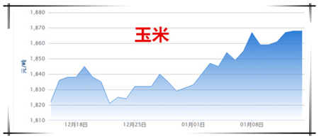 01月14日猪评:目前猪价上涨基础不稳定 预计下旬好转