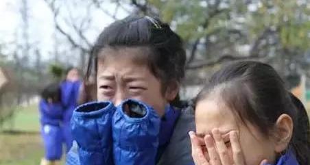 日本震撼教育:让孩子吃掉自己养大的猪,感受生命的意义!