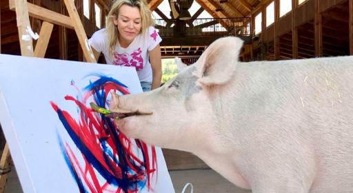 """南非小猪绘画天赋惊人 将举办""""猪生""""首场画展"""