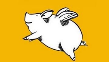 """""""共享仔猪""""、""""云养猪"""" 传统养猪业能否用此大赚一笔?"""