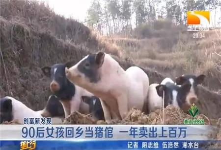 厉害了!湖北90后女孩回乡养这种猪,一年卖出上百万