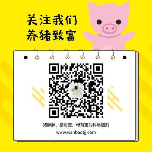 母猪饲养的技术要点 养猪户您可得注意了