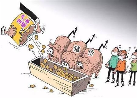 农村小养猪场常见的一个错误做法,让养猪的风险大大增加!