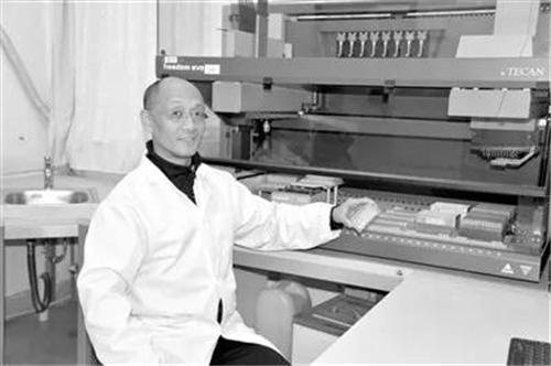 """黄路生:解析家猪遗传的""""中国基因"""""""