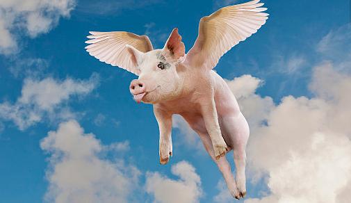 猪总是咳嗽,治疗半个月没效果,怎么办?这里有引起猪咳嗽的疾病大全