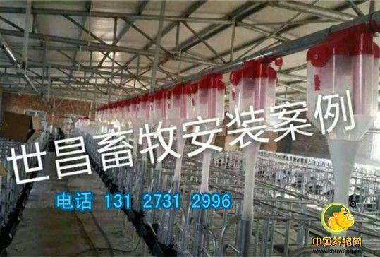 供应养猪料线 猪场自动化料线设计猪用自动料线厂家