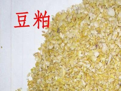 2018年02月13日全国豆粕价格行情走势汇总