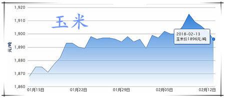 02月13日猪评:止跌上涨走势延续,猪价这是要反攻了吗?