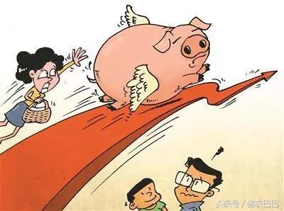 猪价小幅度上涨,全国养殖户们的年后有出栏有机会了!