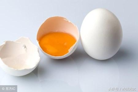 绝了!这些猪病用鸡蛋清就能治好!