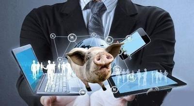 养猪业处于变革的时代,这些互联网要素养猪人了解过吗