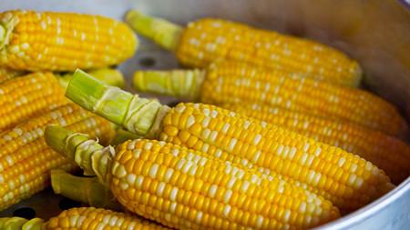 2018年02月20日全国玉米价格行情走势汇总