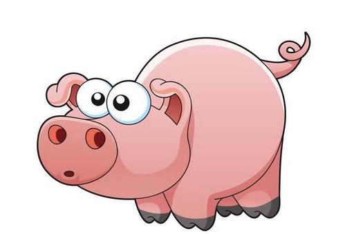 猪价行情止跌反弹!适重猪该不该压栏到年后?