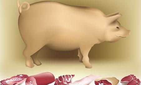 实例!如何规避养猪风险?专业育肥我是这样操作的……