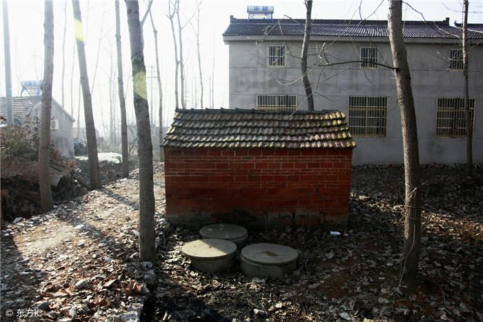 前几年,农村养猪很常见,为了充分利用资源,许多农村也都安装修建沼气池,而如今农村养猪规模化和制度化实施,对于这些沼气池的使用有多大影响呢?