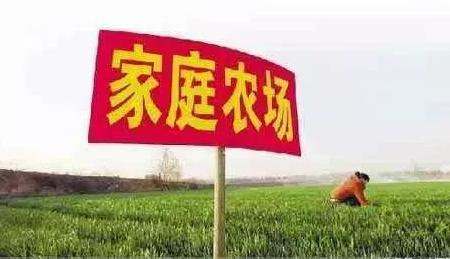 专家:今年养猪想要多赚钱,还得靠农村养猪人!