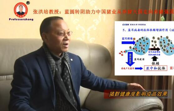 科信药业董事长张洪培先生的个人专访