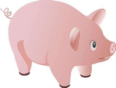 4万亿传统养猪市场的巨变 饲料行业风光不再