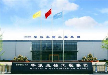 杰出企业奖——华派生物工程集团有限公司