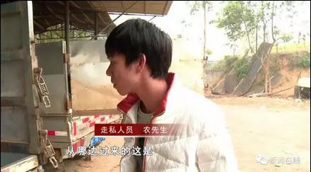 广西电视台新闻频道《新闻在线》