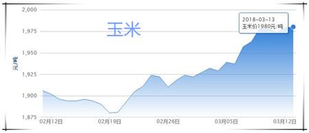 03月13日猪评:猪价再次跌破警戒线,政府收储成最后救命稻草