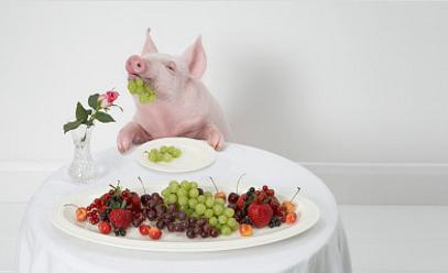 今日猪价跌0.1元/公斤!预期亏损连规模场也挺不住?