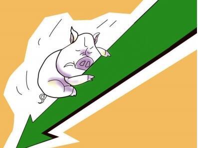 生猪价格创十年最低 养殖户卖头猪要贴260元