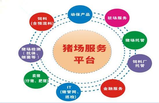 双胞胎集团李建宁:专业分工筑未来 平台共享得双赢