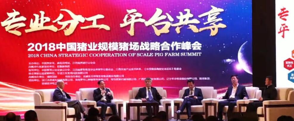 精英的碰撞,观点的盛宴 2018中国猪业规模猪场战略合作峰会之圆桌论坛