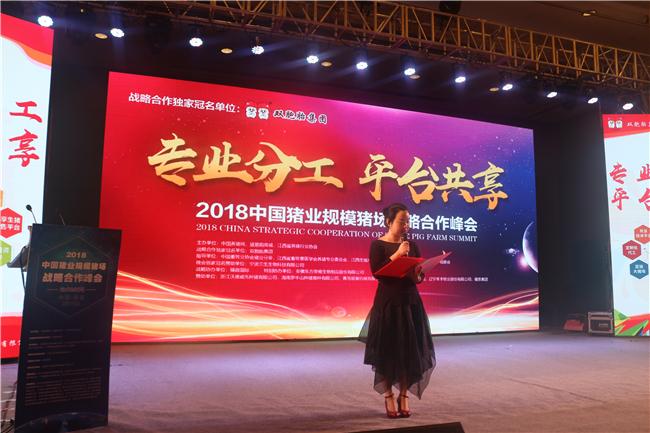 """""""专业分工、平台共享""""——2018中国猪业规模猪场战略合作峰会会议现场"""