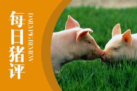 04月13日猪评:屠企加大收猪量,有利改善后期市场过剩局面!