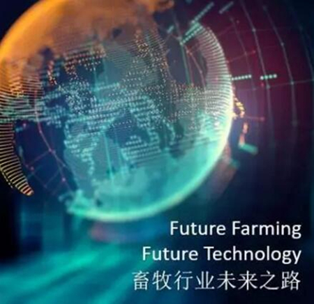 畜牧行业未来之路 ——中荷猪业研讨会