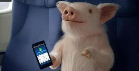 困难与机遇:网易、阿里探索智能养猪新模式!