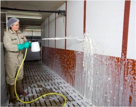 猪场清洗清洁和消毒实用技术报告...