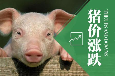 2018年04月19日全国内三元生猪价格行情涨跌表