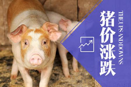 2018年04月19日全国外三元生猪价格行情涨跌表