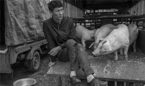 黔西南兴义市底层市民生活黑白摄影欣赏——生猪买卖