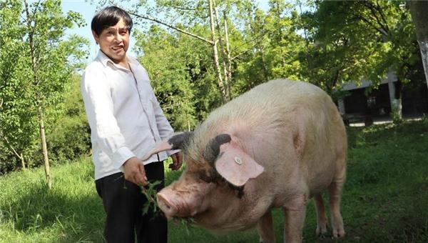 """被埋36天后获救,晚年的""""猪坚强""""如今咋样了"""
