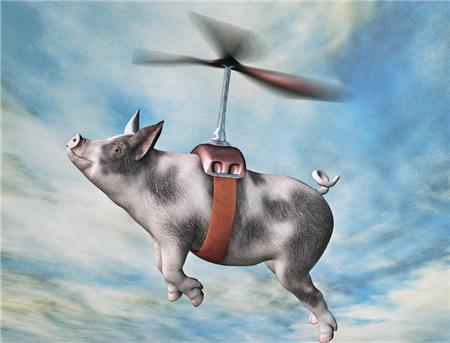 养猪业释放产能,价格低迷;饲料业销量猛增,行情看涨?