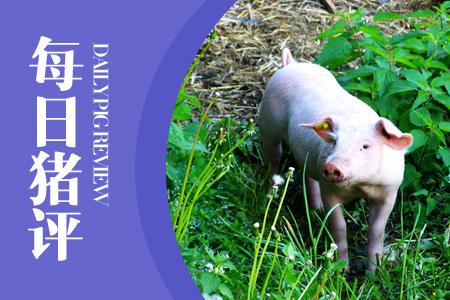 04月25日猪评:猪价持续下跌,养殖户亏损逼近300元/头红线!