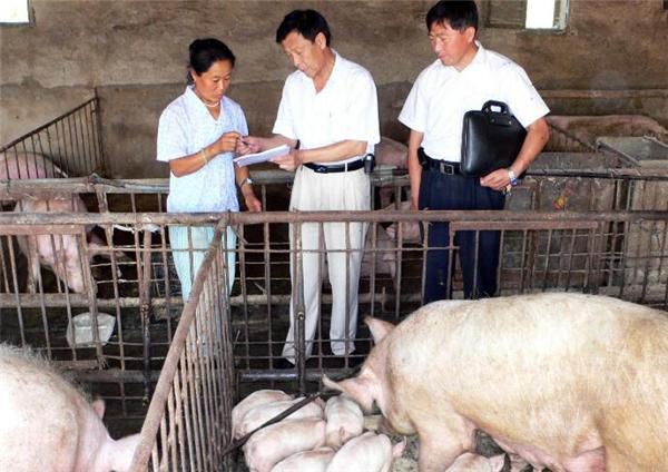 3、使猪肉价格下跌的主要原因主要有一下三个第一点:环保压力。关于今年国家会不会进一步扩大禁养区的规划,有没有可能进一步抬高环保要求这些都直接影响着养生猪的存栏。因为市场的需求才是影响价格的决定性因素。