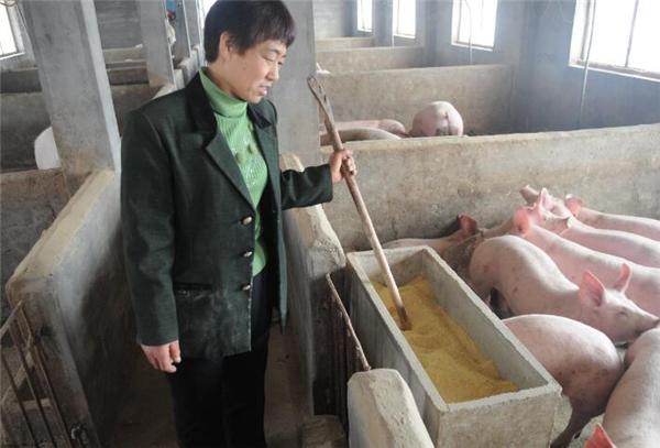 6、在现如今猪价如此低迷的情况下如果说进口猪肉的量还在上涨的话真的就很无奈没有办法了很多养殖户都在想我国的生猪肉要在何时才能够再次上涨。